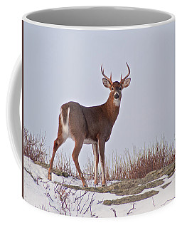 The Watchful Deer Coffee Mug by Nancy De Flon