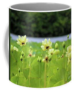 The Water Fields  Coffee Mug