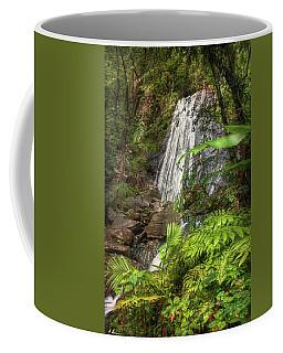Coffee Mug featuring the photograph The Waterfall by Hanny Heim