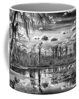 Coffee Mug featuring the photograph The Wetlands by Howard Salmon