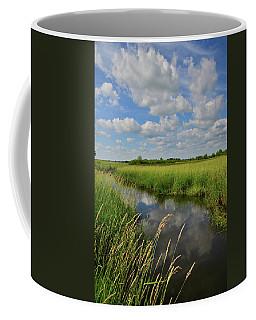 The Wetlands Of Hackmatack National Wildlife Refuge Coffee Mug