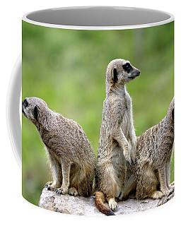 The Wild Bunch Coffee Mug