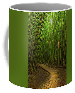 The Winding Road Coffee Mug by James Roemmling
