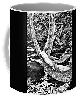 The Wishbone Tree Bw Coffee Mug