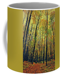 Coffee Mug featuring the photograph The Woods In The North by Michelle Calkins