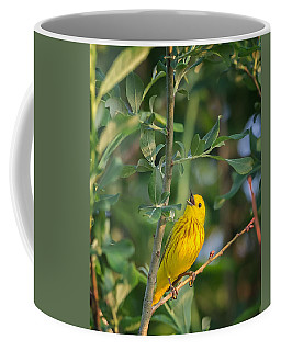Coffee Mug featuring the photograph The Yellow Warbler by Bill Wakeley