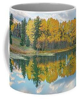There's A Belvedere By This Pond.  Coffee Mug