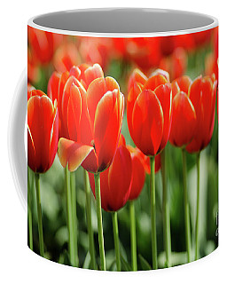 Coffee Mug featuring the photograph Thinking Of Spring by Nick Boren