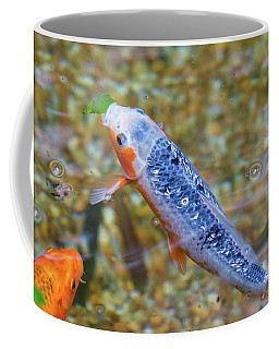 Coffee Mug featuring the photograph This Is Mine Fish by Raphael Lopez