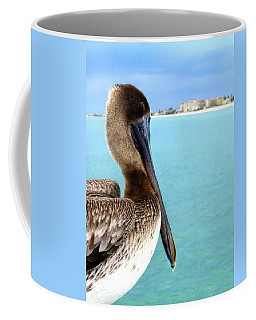 This Is My Town - Pelican At Clearwater Beach Florida  Coffee Mug