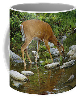 This Picture Has Already Been Indexed Coffee Mug