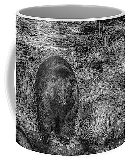 Thornton Creek Black Bear Coffee Mug