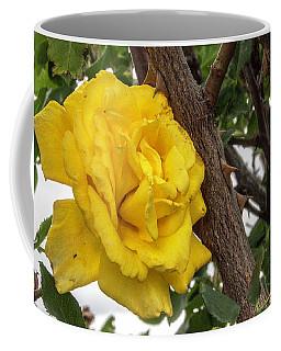 Thorny Love Coffee Mug by Charles Ables