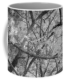 Those Branches -  Coffee Mug