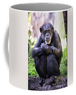 Thoughtful Chimpanzee  Coffee Mug by Stephanie Hayes