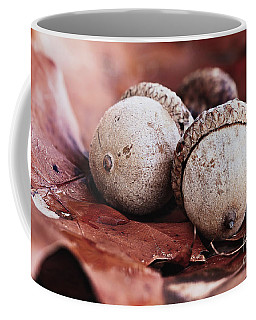 Three Acorns And Autumn Oak Leaves Coffee Mug by Stephanie Frey