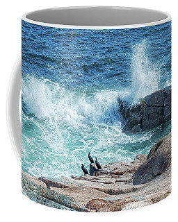 Three Cormorants At Monument Cove, Acadia National Park Coffee Mug