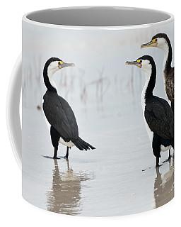 Coffee Mug featuring the photograph Three Cormorants by Werner Padarin