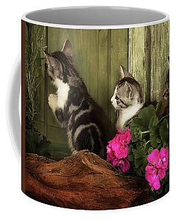 Three Cute Kittens Waiting At The Door Coffee Mug