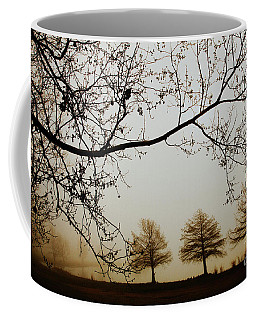 Coffee Mug featuring the photograph Three Cypress In The Mist by Iris Greenwell