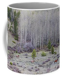 Three Horses Coffee Mug by James BO Insogna