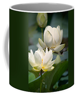 Coffee Mug featuring the photograph Three Lotus Flowers by Mary Almond