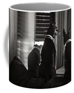 Three Min Pin Dogs Coffee Mug