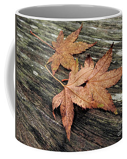 Coffee Mug featuring the photograph Three by Peggy Hughes