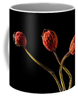 Three Rose Hips Coffee Mug