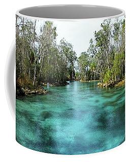 Three Sisters Springs Long View Coffee Mug