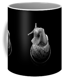 Three Snails Coffee Mug
