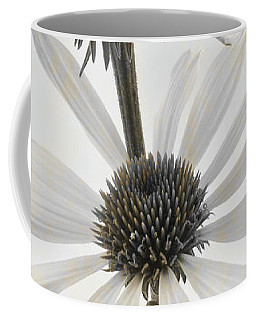 Three White Coneflowers Coffee Mug