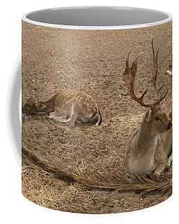 Three Deer Resting Coffee Mug