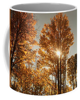Through Sun Glasses Coffee Mug