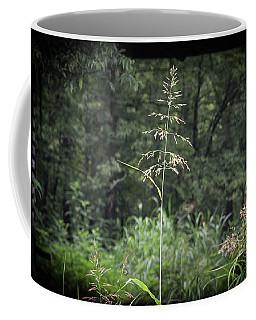 Through The Barn Coffee Mug