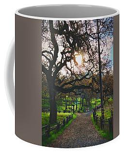 Through The Oaks Coffee Mug