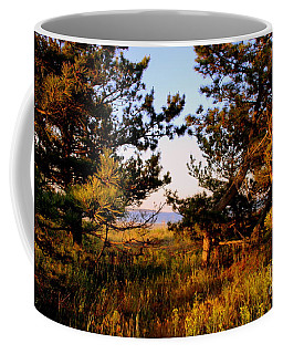 Through The Pine Grove Coffee Mug