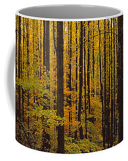 Through The Yellow Veil Coffee Mug