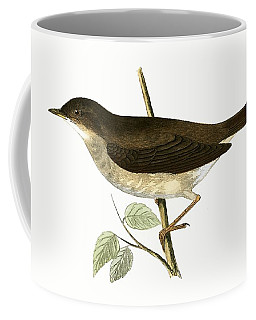 Thrush Nightingale Coffee Mug