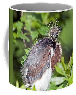 Ticked Off Coffee Mug