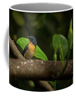Tickell's Blue Flycatcher Coffee Mug