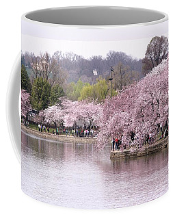 Tidal Basin Cherry Trees Coffee Mug