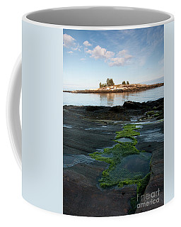 Tidal Pools, Moss And Granite On Maine's Rocky Coast #8047 Coffee Mug