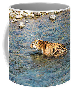 Tiger In The Water Coffee Mug by Pravine Chester