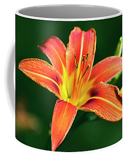 Coffee Mug featuring the photograph Tiger Lily by Christina Rollo