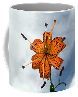 Tiger Lily In A Shower Coffee Mug by Kevin Fortier