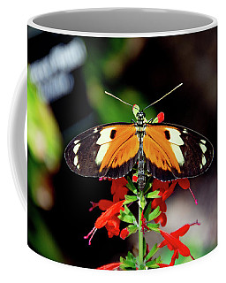Tiger Longwing Butterfly Coffee Mug