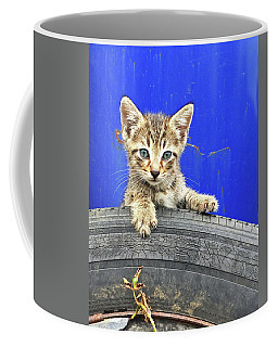 Tiger Paw Coffee Mug