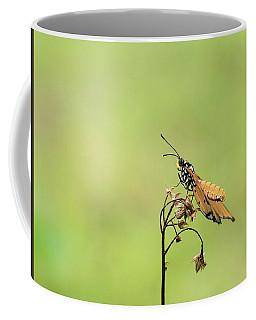 Plain Tiger Butterfly Coffee Mug by Djoko Widodo