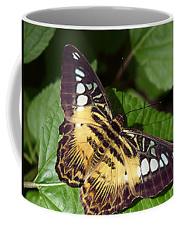 Tiger Print --- Clipper Butterfly Coffee Mug